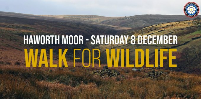 Today we walk in protest of Yorkshire Waters driven grouse shoot policy. #StopTheShoot #PeoplesManifestoForWildlife #PeoplesWalkForWildlife