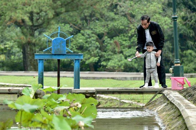 Tak hanya rusa, Presiden kemudian mengajak Jan Ethes untuk memberi makan ikan. #JokowiKeluargaHarmonis Photo