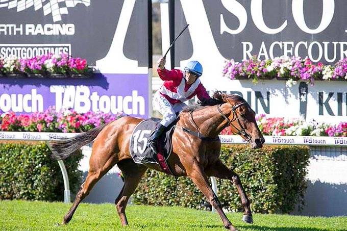Pierro (Lonhro) sires his third Group 1 winner after exciting three-year-old filly Arcadia Queen blitzes her rivals in the @mmsnippets Kingston Town Classic. Material Man was runner-up with Galaxy Star was third. Photo