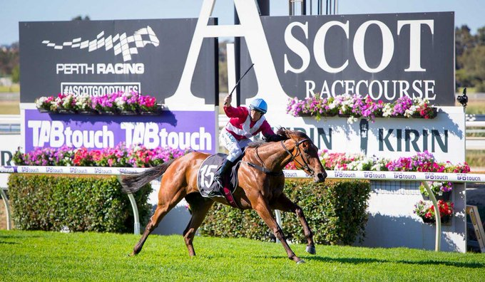 ! Demolition job as Arcadia Queen becomes 2nd filly to capture the G1 Magic Millions Kingston Town Classic over 1800m at Ascot. The Pierro filly – a ½ sister to SWs Arcadia Dream and Arcadia Rose – was bred and raced by Bob Peters, winning the race for the 5th time Photo