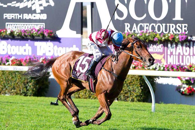Kingston Town Classic winner Arcadia Queen set to fly in The Golden Eagle. STORY HERE: Photo