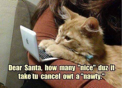 Happy #Caturday my lovelies We've been very nice this year. Photo