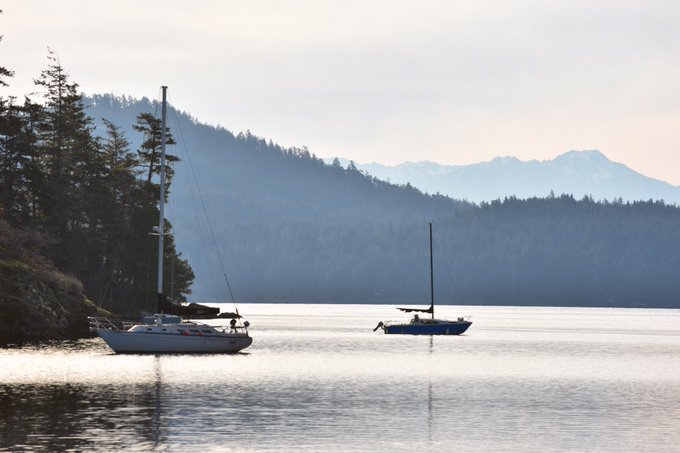 Even in December, Vancouver Island looks pretty good. Views from Sooke and Avatar Grove. Photo