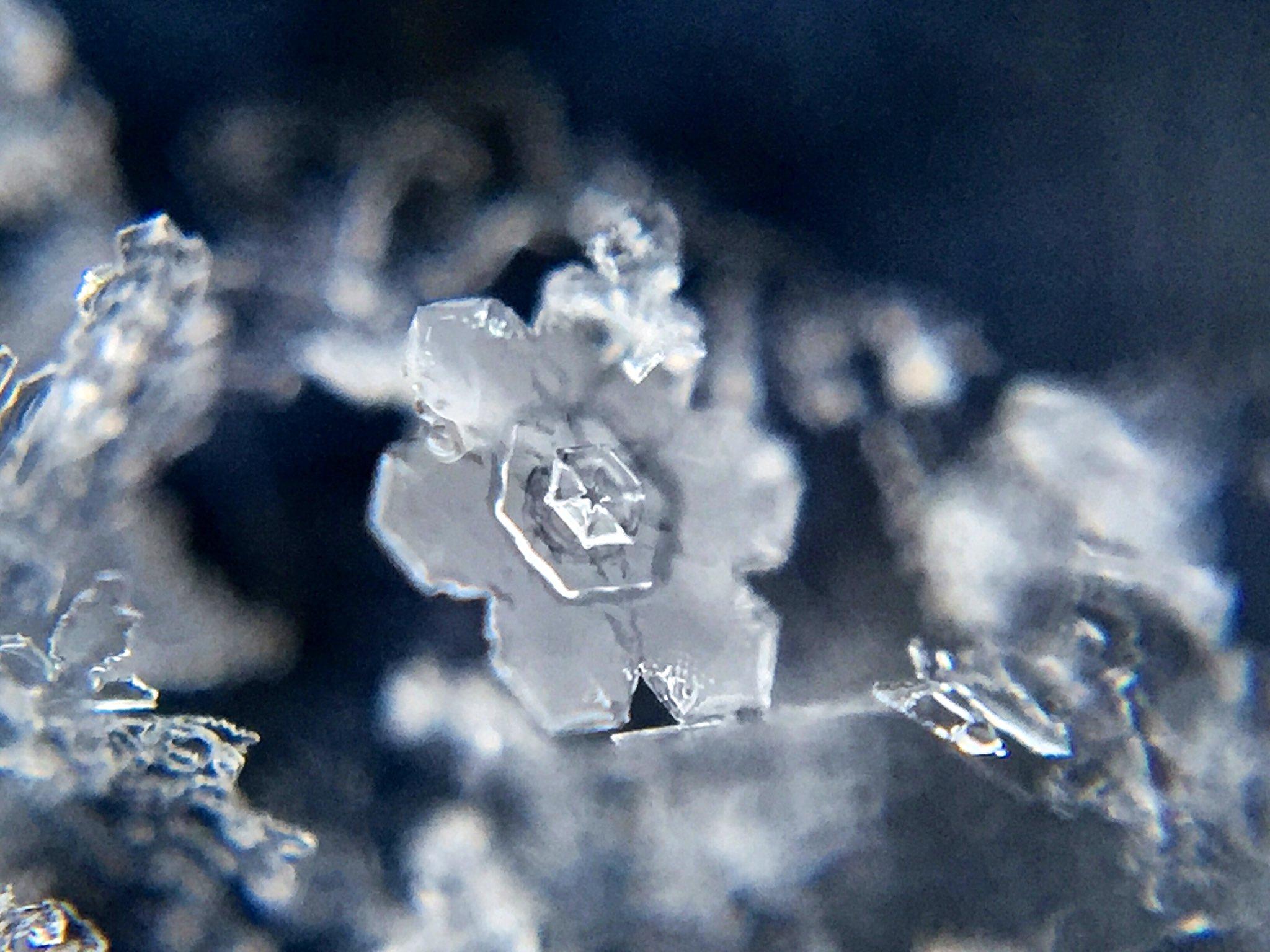 雪の結晶の撮り方!!100均に売ってるアレを使うだけで気軽に&綺麗に!!