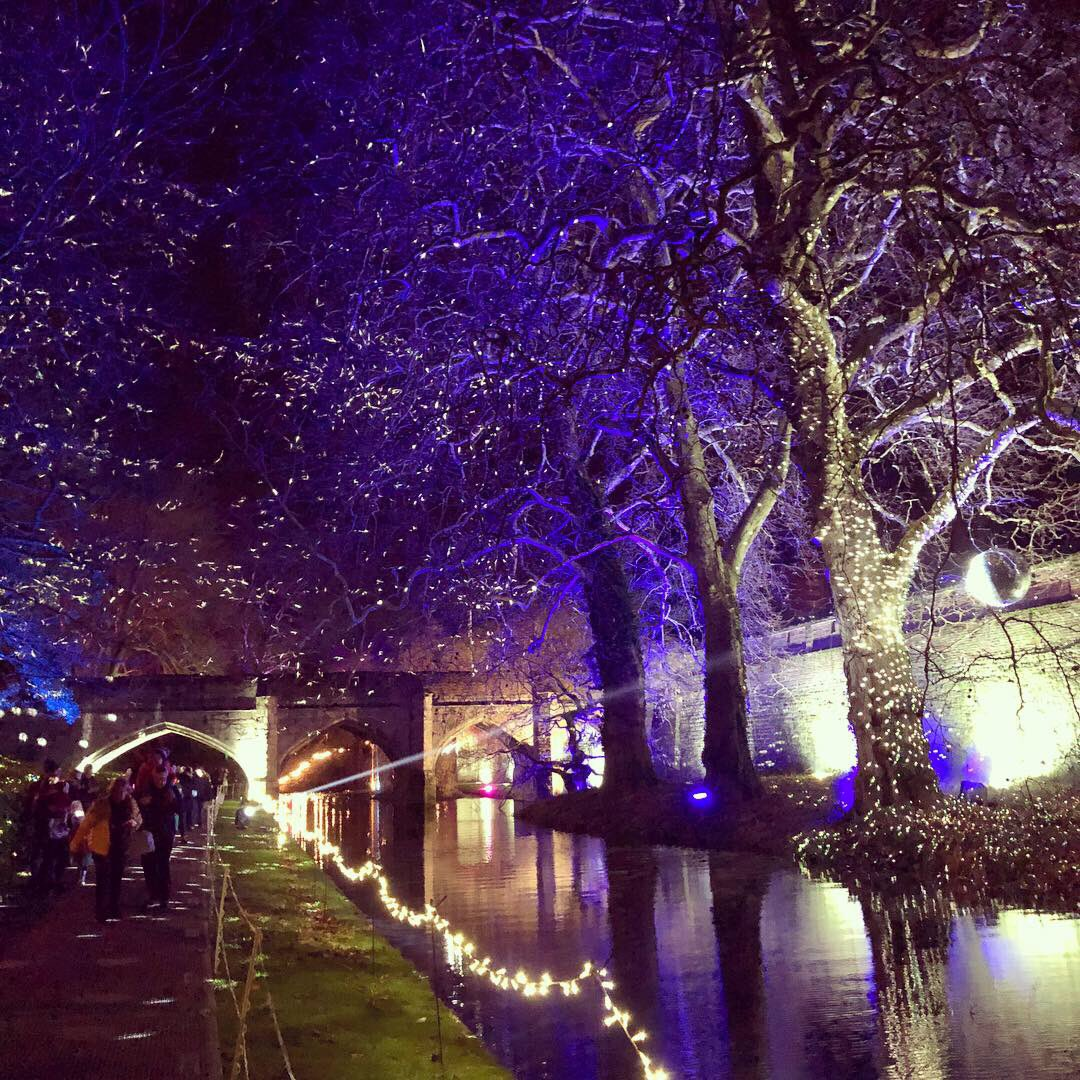 Our #EnchantedEltham installation this year for @EnglishHeritage @ElthamPalace - come down this month for a spectacular and enchanting stroll