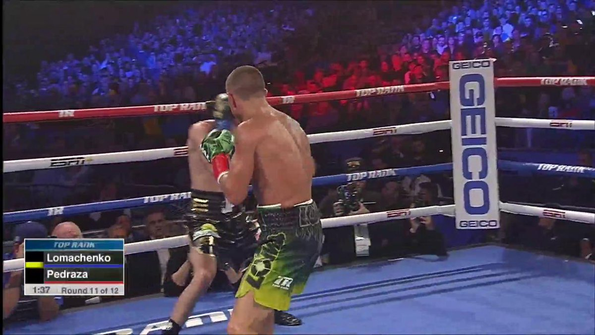 It's hard to argue against the people saying Vasyl Lomachenko is the best ever technical boxer. I have to agree that he would have beaten a prime Floyd Mayweather. Wow, just WOW! #LomaPedraza #GOAT #Lomachenko