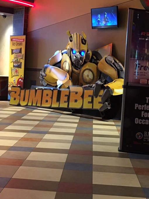 @HaileeSteinfeld today was a really amazing day thanks to @bumblebeemovie, I cried and laughed and it was everything I needed. I can't wait to see it again and again and again #BumbleBeeMovie Photo