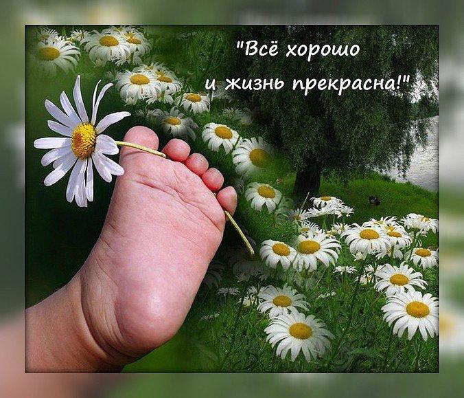 Поздравление, открытка жизнь прекрасна удивительна