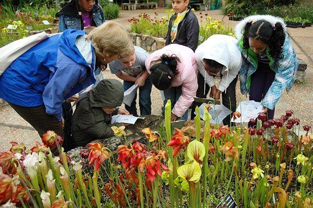 NC Botanical Garden