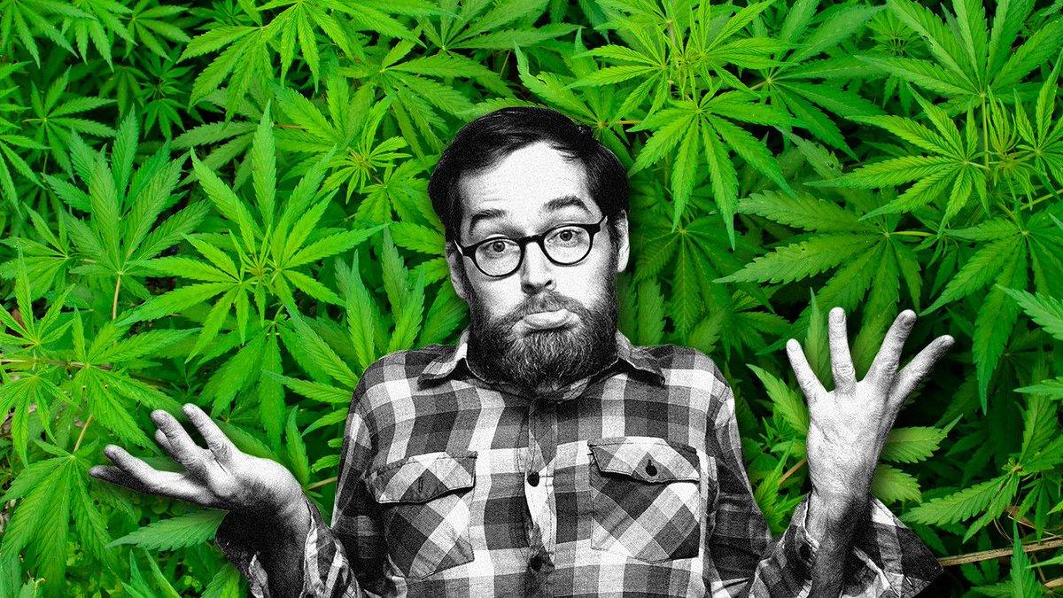 Кайф конопля брауни с марихуаной эффект