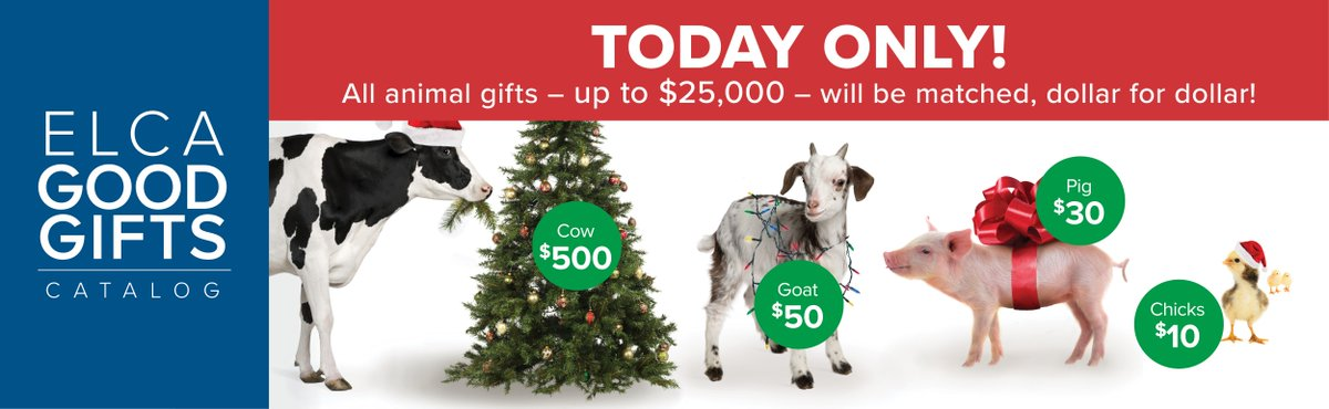 All animal gifts in the @ELCA Good Gifts Catalog are being matched until 11:59PM today. Give online at http://elca.org/goodgifts pic.twitter.com/10Vn2TiA7l