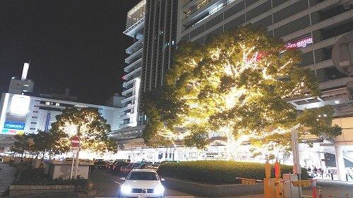1000RT:【新名所?】名古屋駅前の「光るブロッコリー」が話題JR東海の担当者は、「意識はしていなかったが、ブロッコリーと表現して、親しんでもらえるのはありがたい」としている。