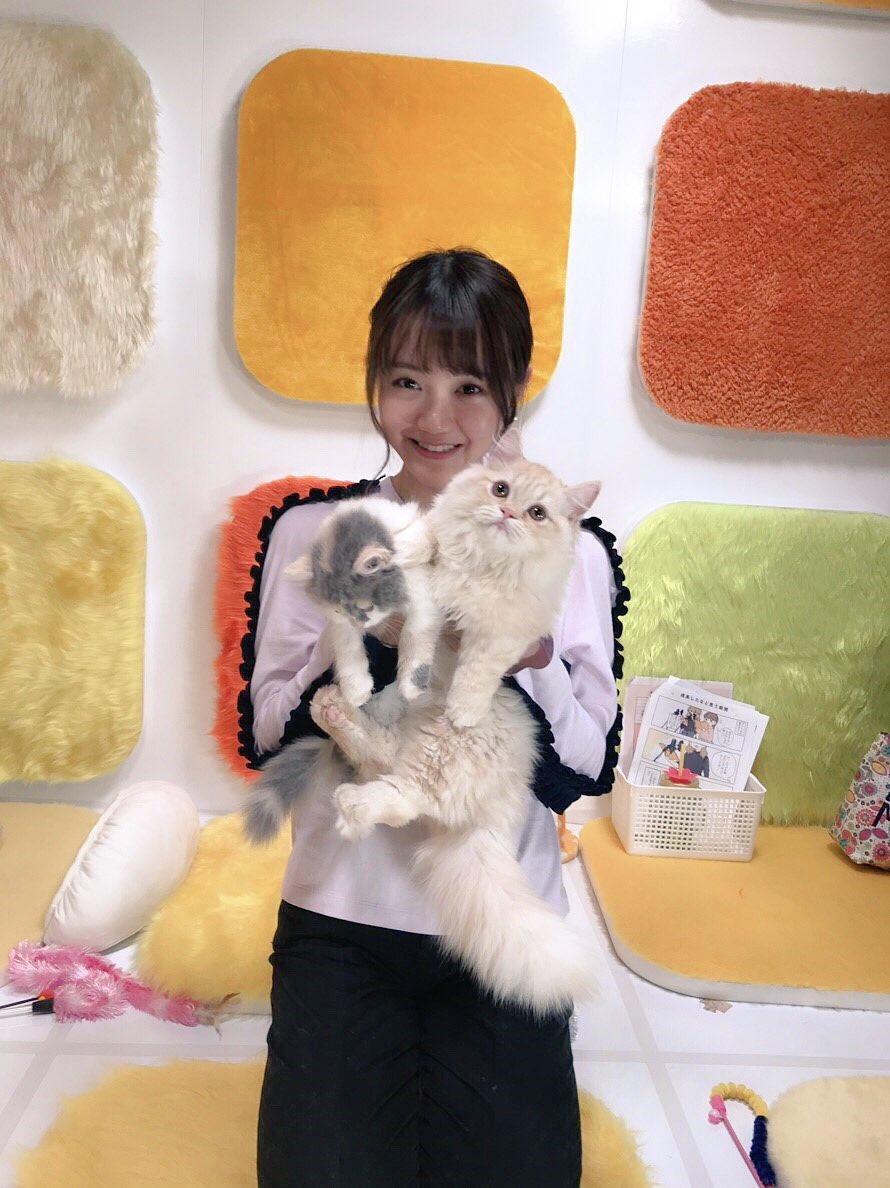 #スイツイありがとうございました🐈💕千秋さん、子猫に癒された〜♪♪