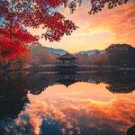 日本に生まれて良かった…!2つの古都の真っ赤な秋!