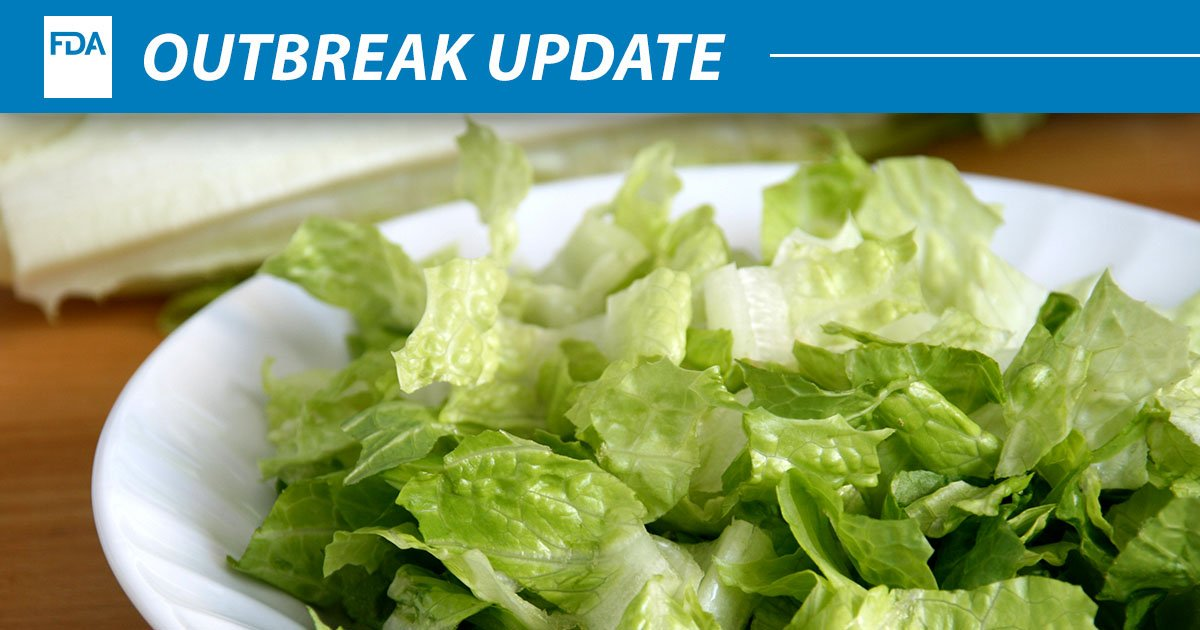 lettuce salads - HD2800×1867