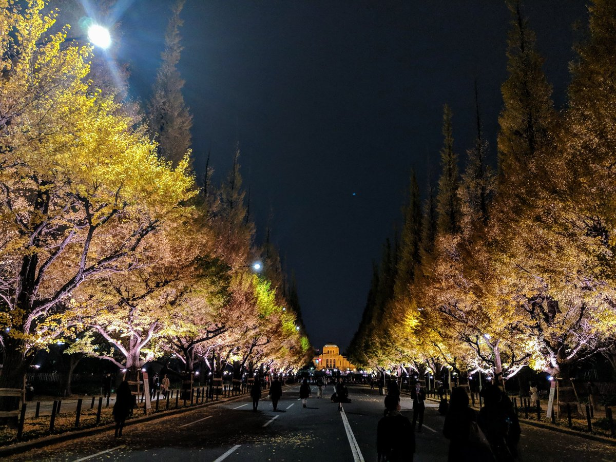 昨晩の神宮外苑銀杏並木。美しす!そしてPixel2だけどNight Sightいけました :D
