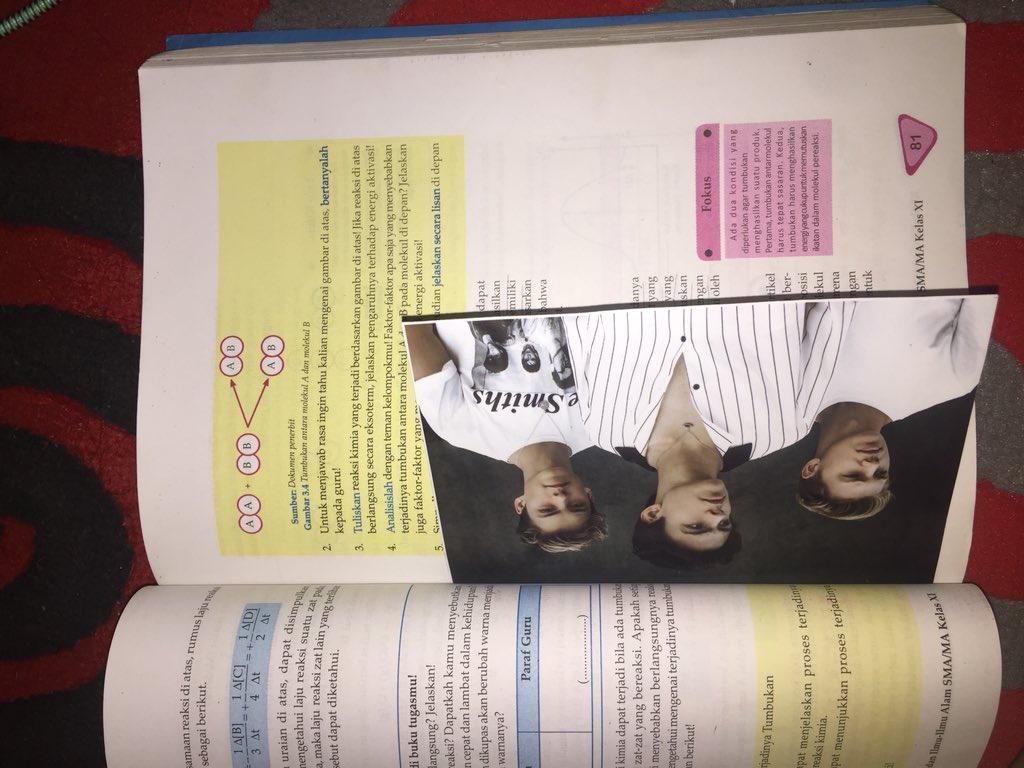 Döblin Handbuch: Leben