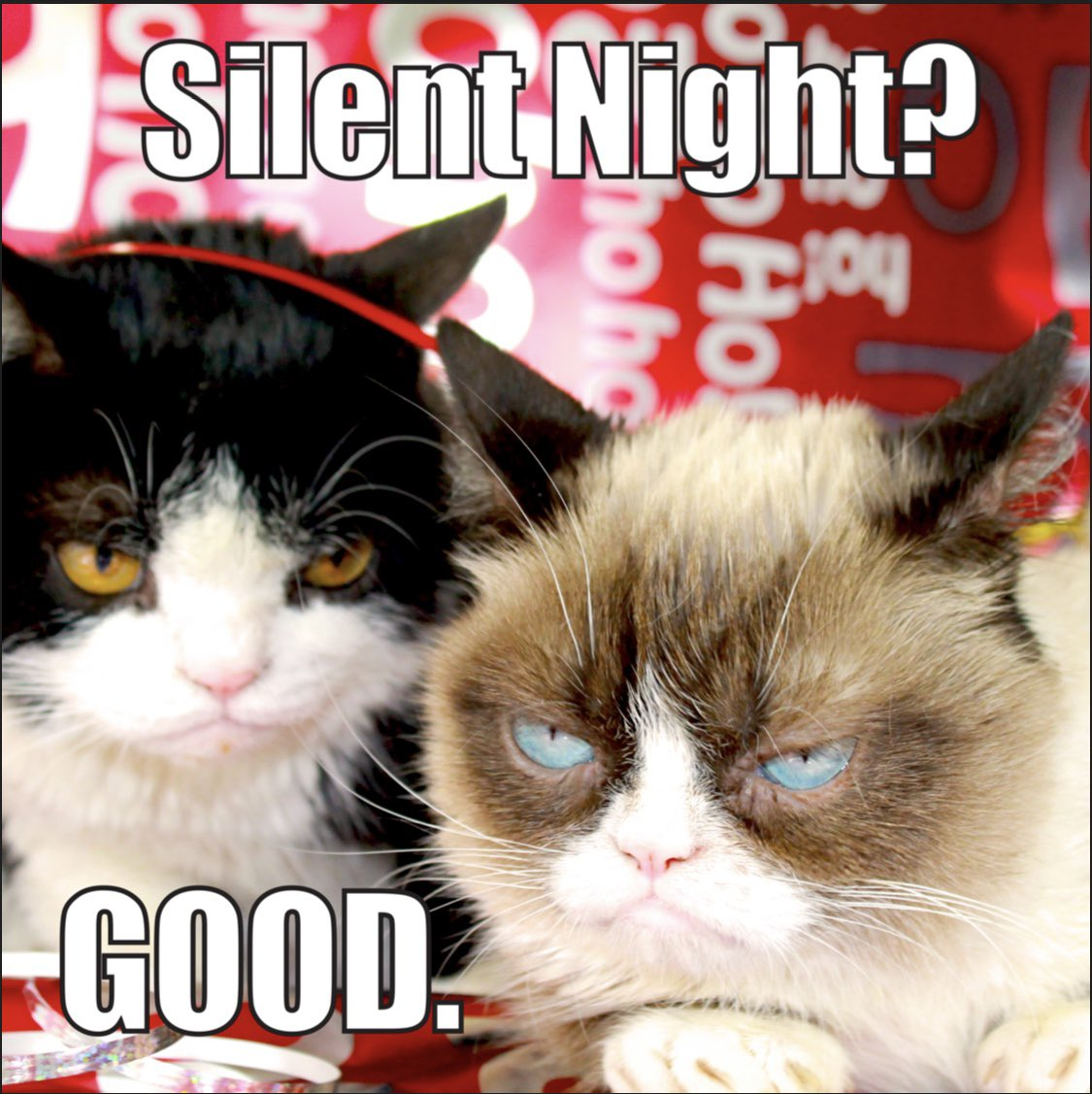 Grumpy Cat On Twitter Enough With The Cheer Already All New