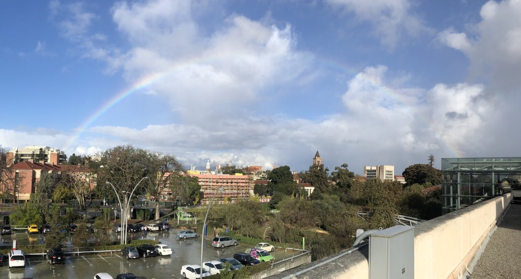 @OxyMLZ A rainbow of #tanagers to compliment this rainbow view from @NHMLA! What could be better?