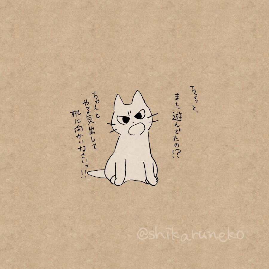 勉強する気が起きない人を叱ってくれる猫