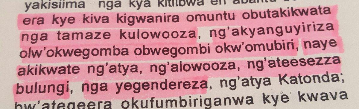 Stephen S  Musoke - Homo sapiens #aedifex #Xennial on