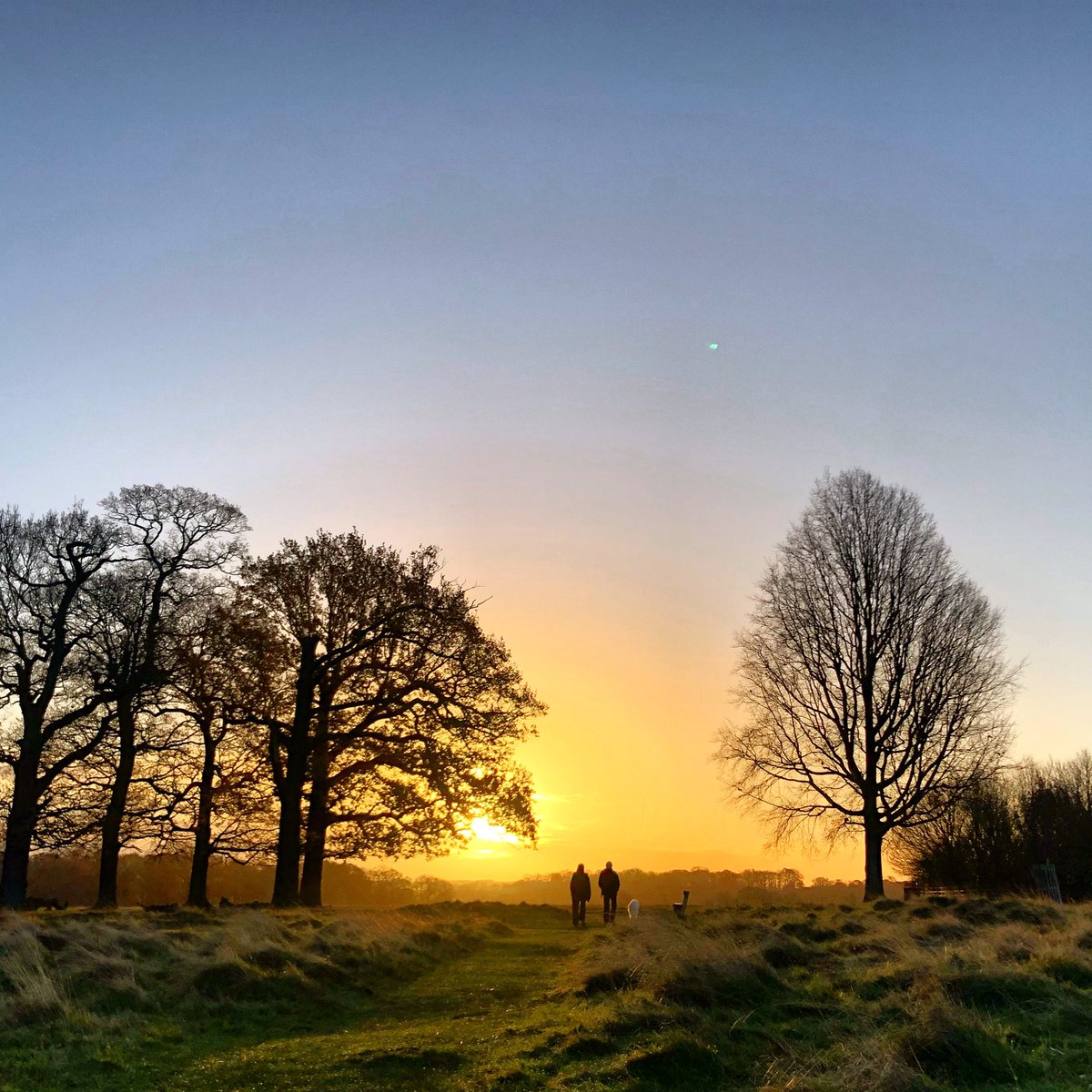 Morning! Have a great Friday 🙏🏻#RichmondPark