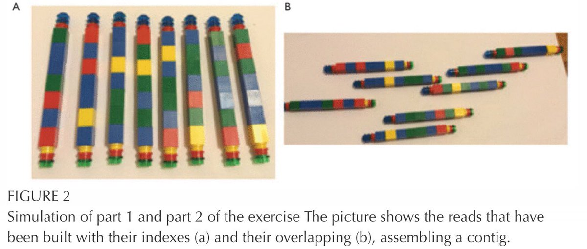 sequencing with Lego