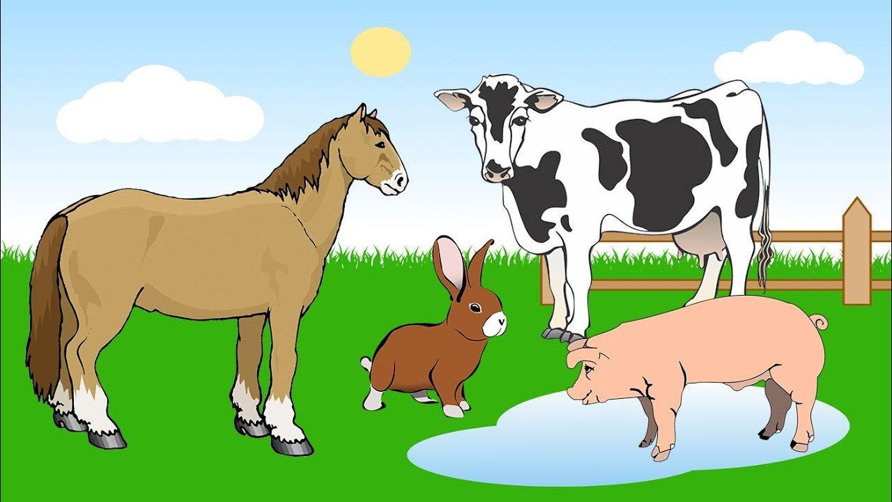 тверской корова лошадь овца свинья картинки выявления дефектов