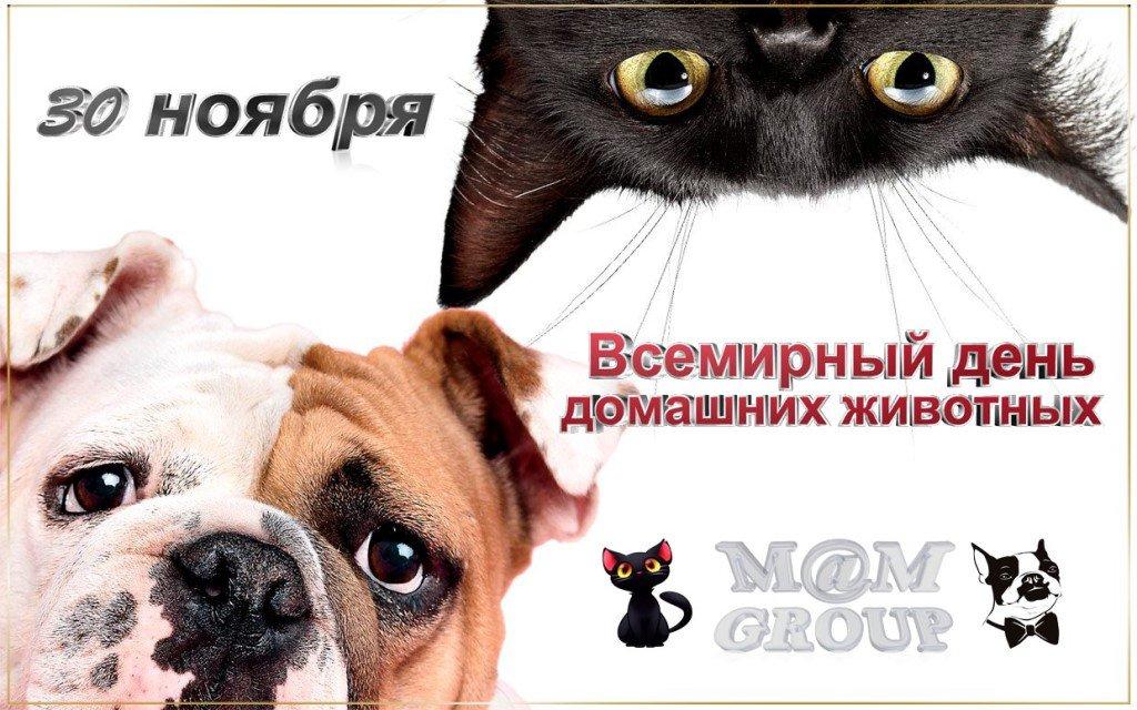 день домашних животных поздравления в прозе отсчет десяти лет