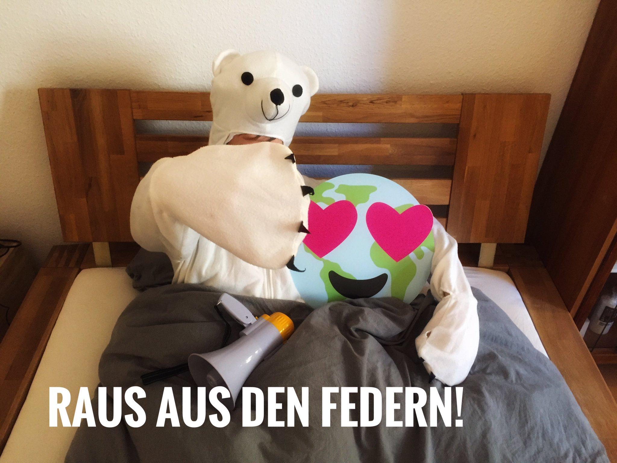 Georg P Kössler On Twitter Guten Morgen Eisbären Und