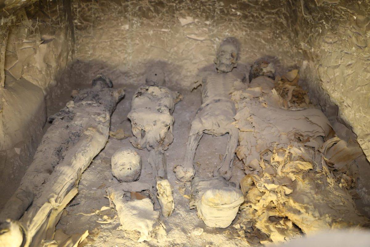 Interesting moment fetish mummificatiom stories something