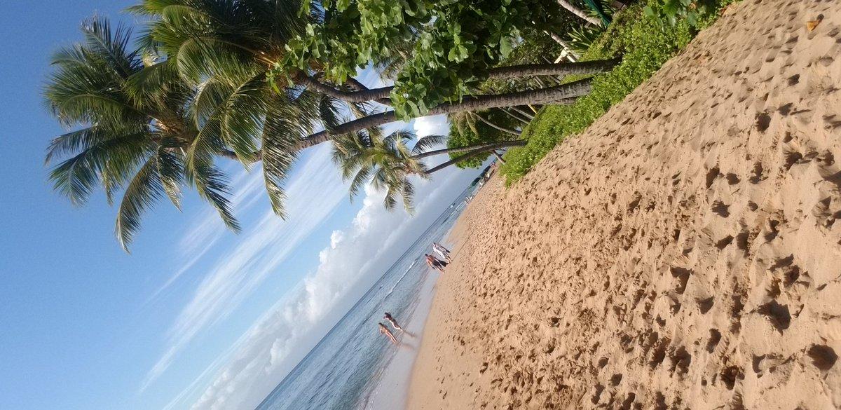 #maui #wowie #noplacelikeit #Hawaii ♡♡♡♡♡♡♡♡♡♡