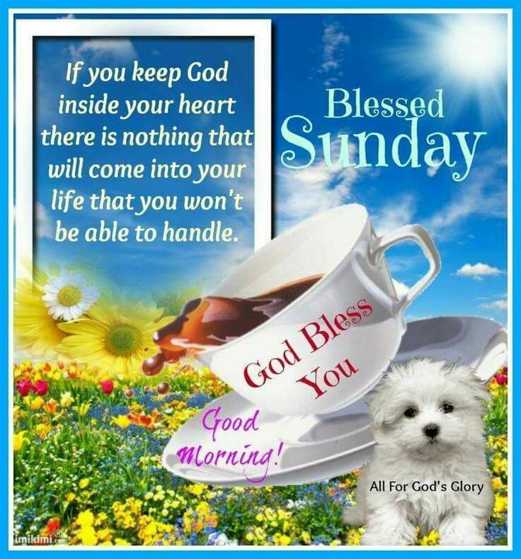 Happy Blessed Sunday Tweet Added By Ms Gwen Download
