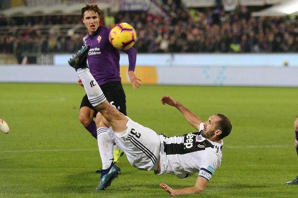 Giorgio Chiellini Fiorentina : Picking The Best Potential ...