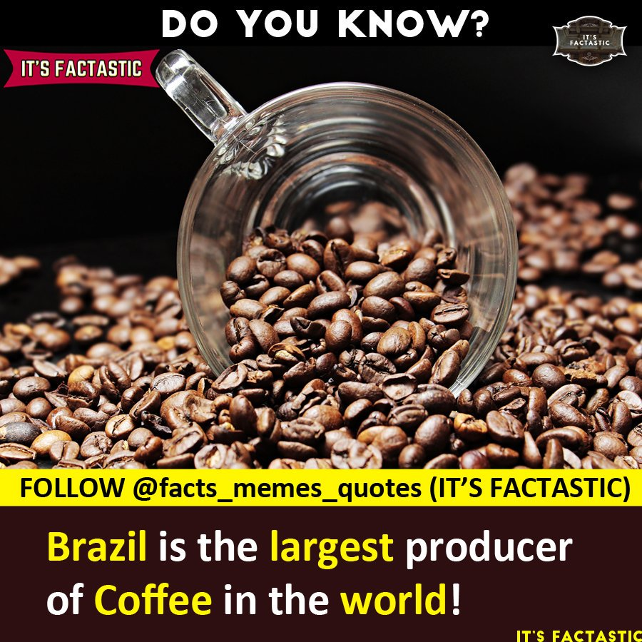 """IT'S FACTASTIC on Twitter: """"Tag A Coffee Lover!☕😊😊 . - FOLLOW ... #coffeeBean"""