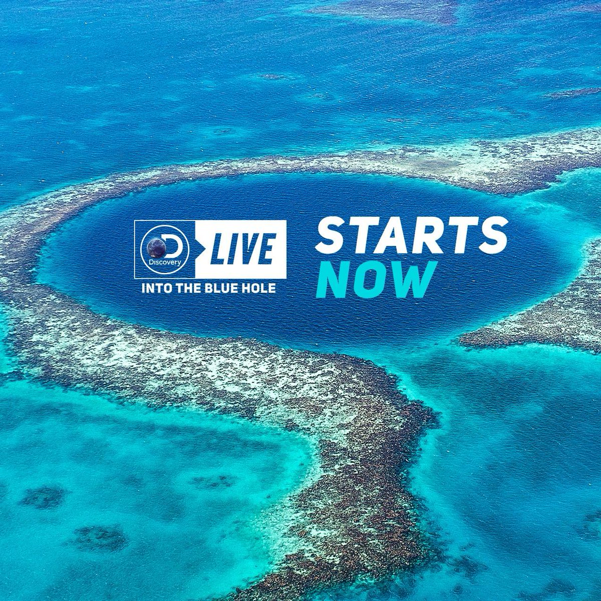 #DiscoveryLive: Into the #BlueHole starts NOW. 🔵 Watch it LIVE here --> https://t.co/810H7XuoJ7