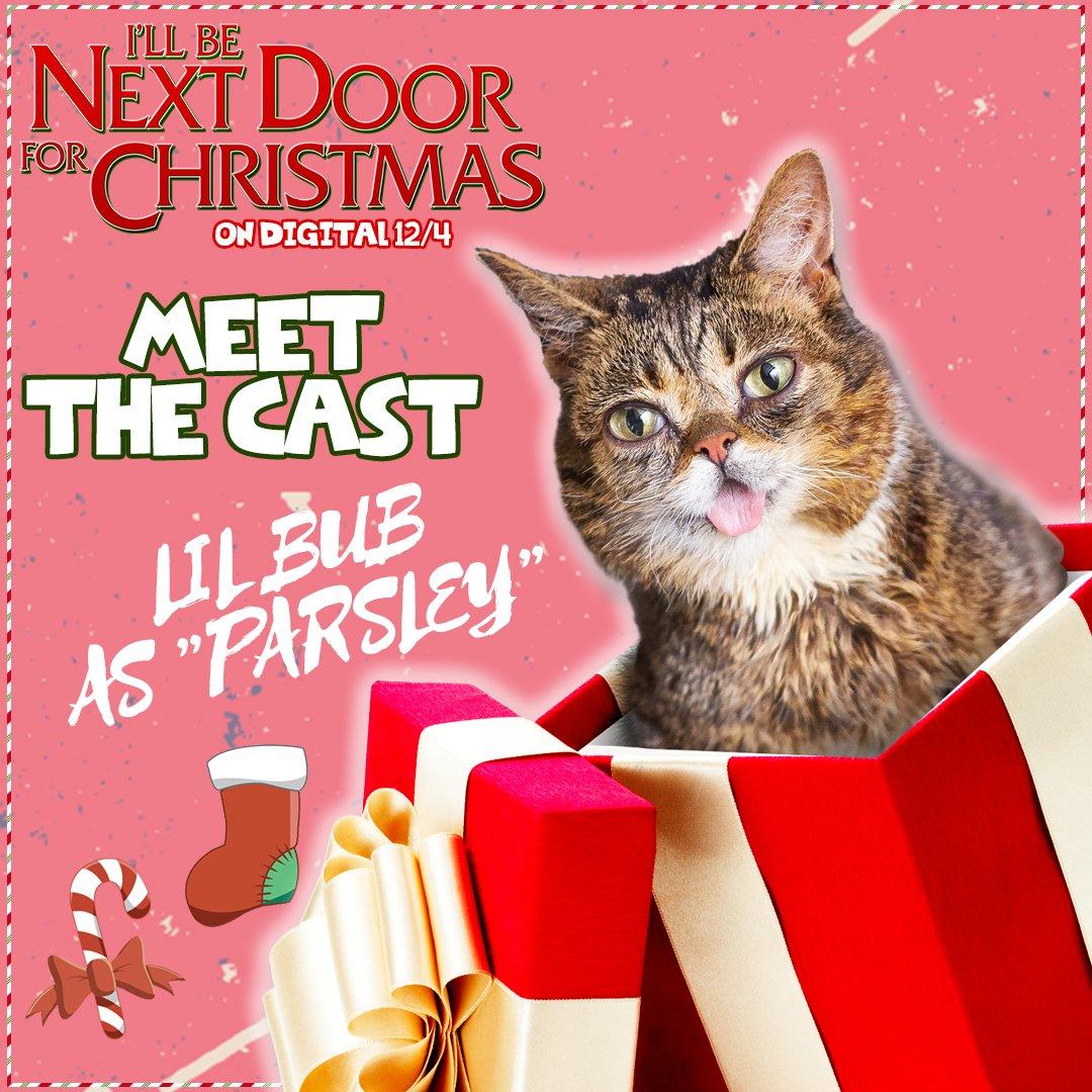 That Christmas Movie Thatxmasmovie Twitter