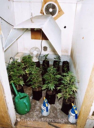 Вентиляция помещения для конопли слабость после марихуаны