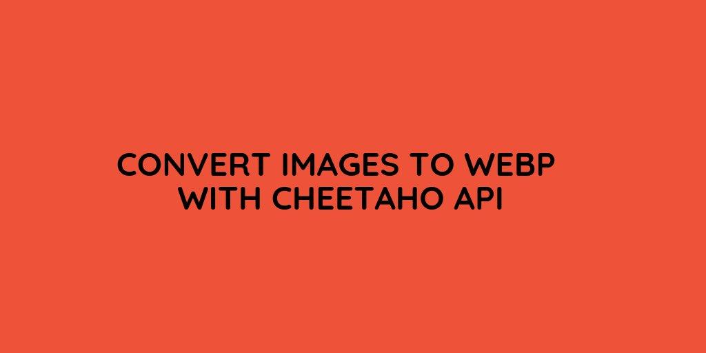 cheetahocom photo