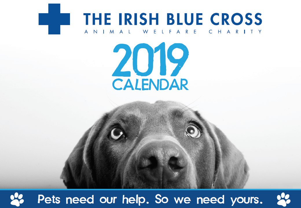 The Irish Blue Cross (@IrishBlueCross) | Twitter
