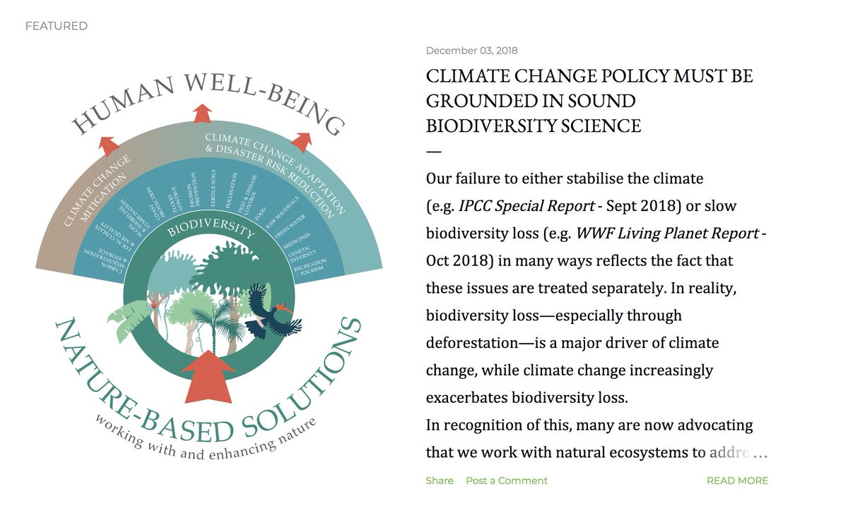 As we fight over the next two weeks to increase ambition for #nature in climate policy, we must ensure it is grounded in sound #biodiversity science. Some thoughts in a new blog post as @COP24 kicks off nathalieseddon.blogspot.com/2018/12/climat…