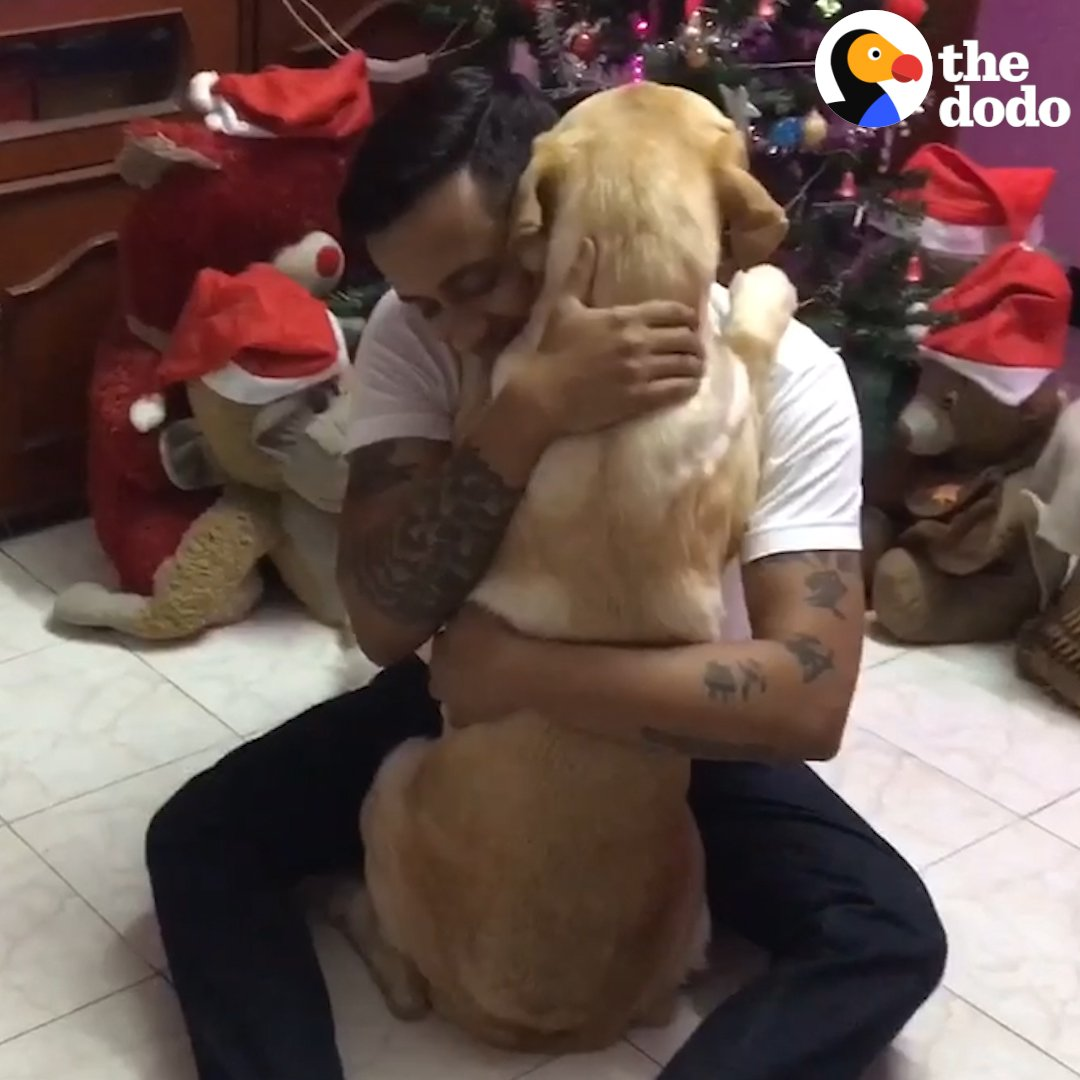 Dogs hugs his dad after surgery ❤️️