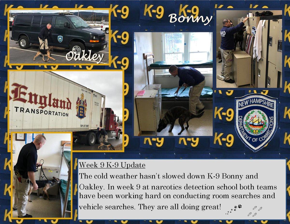 Week 9 and going strong! # NHDOC #K9School #9down2togo #K9Bonny #K9Oakley pic.twitter.com/GNkONsSmjD