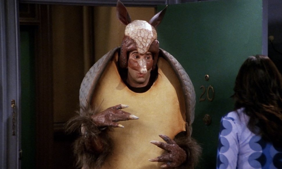 "The Holiday Armadillo has granted your wish: ""Friends"" will still be there for you in the US throughout 2019"