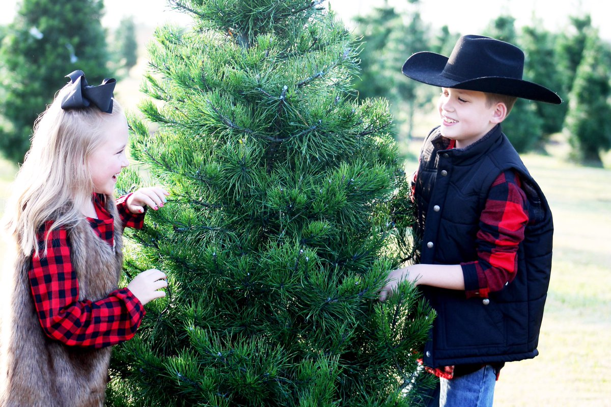 Jessica J On Twitter Love Love Love The Christmas Tree Farm Family Photoshoot I Will Be At The Tree Farm Again On Sunday If You Still Need Christmas Pictures Now Is