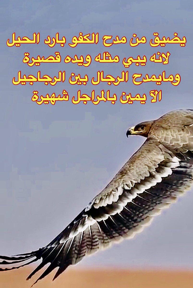 إنصهار مستشار حاج قصيدة مدح الرجال الطيبين تويتر Comertinsaat Com