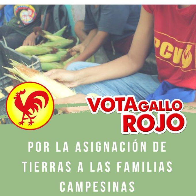 #7Dic / ¡Por la asignación de tierras a las familias campesinas! Por los derechos y patria soberana #VotaGalloRojo Photo