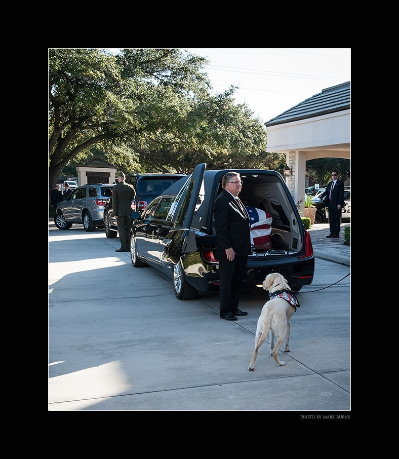 Heres a photo that I made yesterday of President Bushs service dog Sully just after his casket was placed into the Presidential Hearse as the motorcade prepared to leave the funeral home in Houston. #GeorgeHWBush #Bush41 #BushFuneral