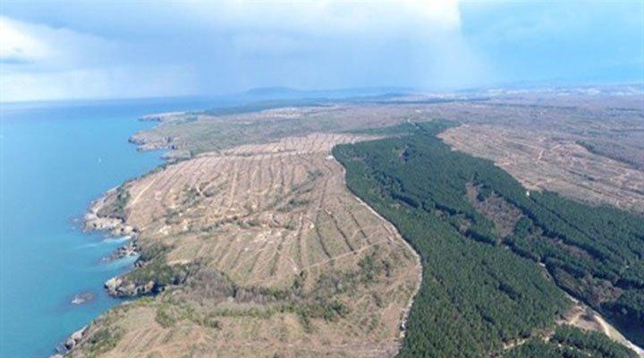 Uğruna 650 bin ağaç kesilmişti: Japonya, Sinop nükleer santralinden vazgeçiyor bit.ly/2Q8UyOi