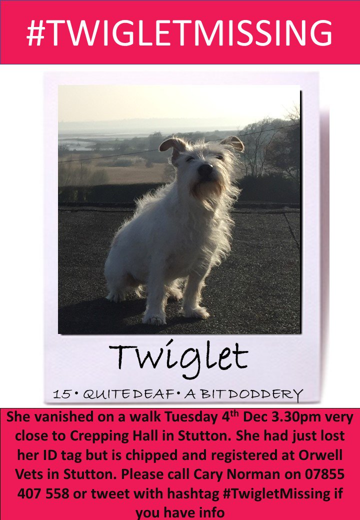 #URGENT #missingdog #elderly 15 year old *quite #deaf girl TWIGLET WENT MISSING ON A WALK around 3.30pm 4/12 nr Crepping Hall #Stutton #ipswich  So cold out &amp; TWIGLET needs to be found asap. Pls tweet #TwigletMissing or contact  @MrMaxNorman or no. below with any info! #scanme<br>http://pic.twitter.com/dwZOtWEBky